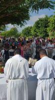 misa-guazumal